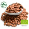 Certified Organic Bitter Apricot Kernels - 200g