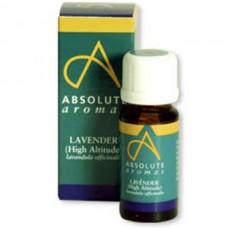 Absolute Aromas Lavender Essential oil, 10ml