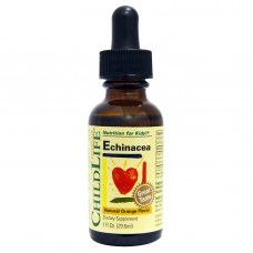 ChildLife, Essentials, Echinacea, Natural Orange Flavor,  (29.6 ml)